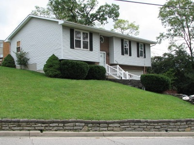 Newport Single Family Home For Sale: 223 Bluegrass