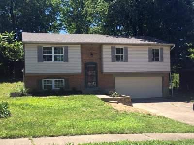 Erlanger Single Family Home For Sale: 3478 Blue Creek Drive