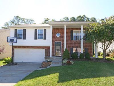 Erlanger Single Family Home For Sale: 3395 Spruce Tree Lane