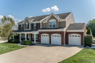 Boone County Single Family Home For Sale: 9878 Burleigh