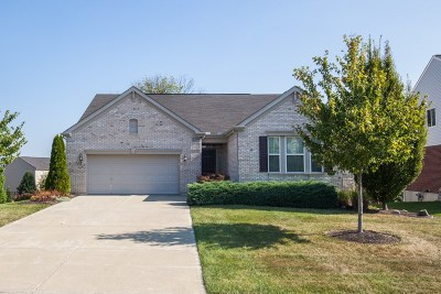 Hebron Single Family Home For Sale: 2399 Treetop Lane