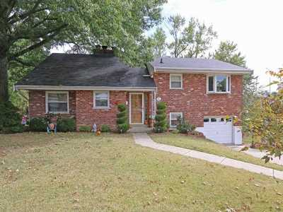 Highland Heights Single Family Home For Sale: 84 Faren Drive
