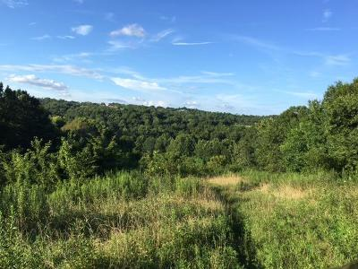 Boone County, Campbell County, Gallatin County, Grant County, Kenton County, Pendleton County Residential Lots & Land For Sale: 1250 Clarks Creek Road