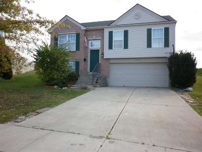 Boone County Single Family Home For Sale: 10077 Armstrong Street