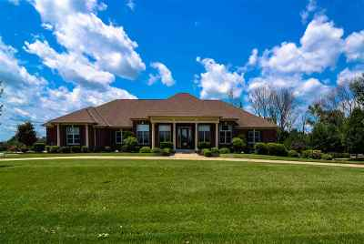 Boone County Single Family Home For Sale: 3231 Ballantree Way