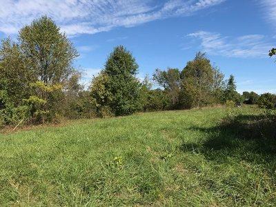 Boone County Residential Lots & Land New: 15141 Glencoe-Verona Road