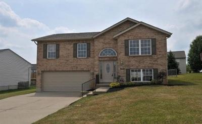 Dry Ridge Single Family Home For Sale: 291 Fairway