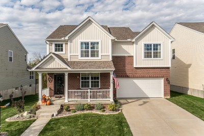 Single Family Home For Sale: 9781 Soaring Breezes