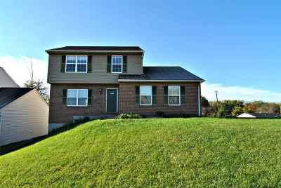 Erlanger Single Family Home For Sale: 3361 Cedar Tree Lane