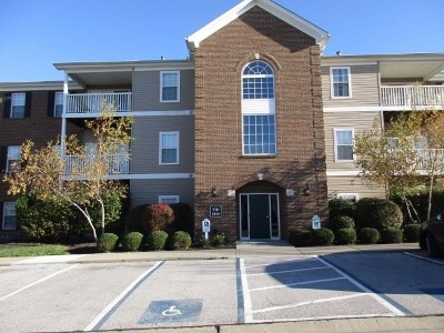 Boone County Condo/Townhouse For Sale: 996 Mistflower Lane