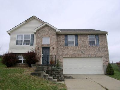 Dry Ridge Single Family Home For Sale: 125 Eagle Creek