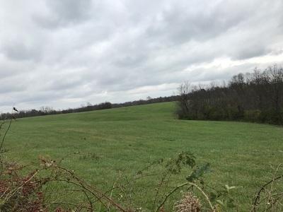 Dry Ridge Farm For Sale: 215 Peaceful Hollow Road