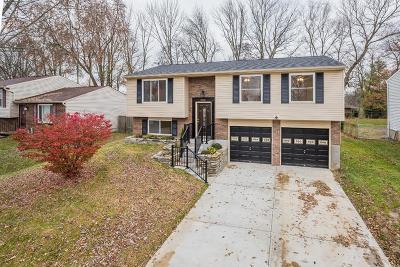 Erlanger Single Family Home For Sale: 3455 Ridgewood Drive