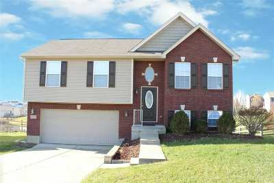 Independence Single Family Home For Sale: 10354 Chambersburg Drive