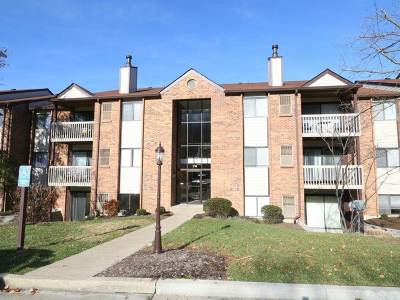 Campbell County Condo/Townhouse For Sale: 74 View Terrace #7