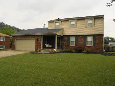 Carroll County Single Family Home For Sale: 214 Deatherage Drive