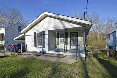 Campbell County Single Family Home For Sale: 25 Mary Ingles Hwy