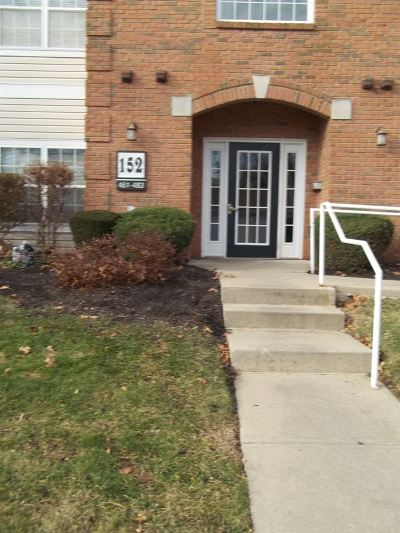 Boone County Condo/Townhouse For Sale: 152 Saddlebrook Lane #471