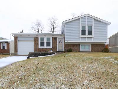 Boone County Single Family Home For Sale: 7752 Arrow Wood Drive