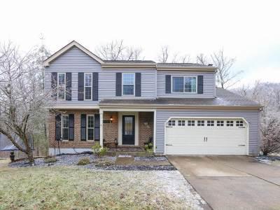 Alexandria Single Family Home For Sale: 156 Stonegate Drive