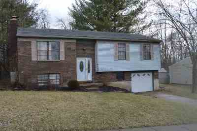 Kenton County Single Family Home For Sale: 4138 Circlewood Drive