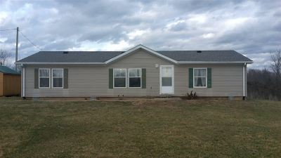 Owen County Single Family Home For Sale: 265 Parts Lane