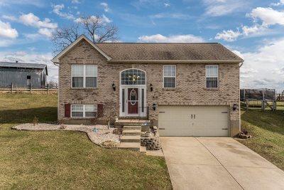 Dry Ridge Single Family Home New: 69 Eagle Creek Drive
