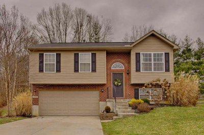 Alexandria Single Family Home For Sale: 135 Ridgewood Drive