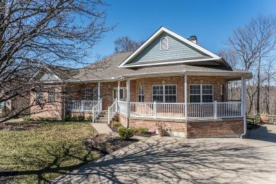 Florence Single Family Home For Sale: 8747 Skyview Drive