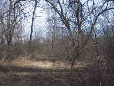 Hebron Residential Lots & Land For Sale: 1667 Brandon