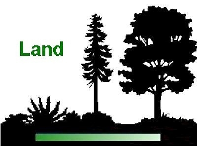 Alexandria Residential Lots & Land For Sale: 6614 Lower Tug Fork
