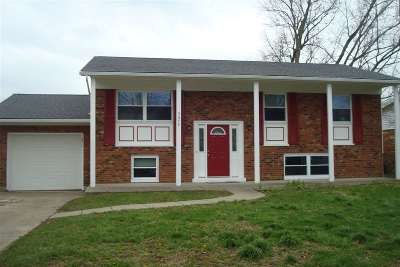 Florence, Erlanger Single Family Home For Sale: 3353 Fir Tree Lane