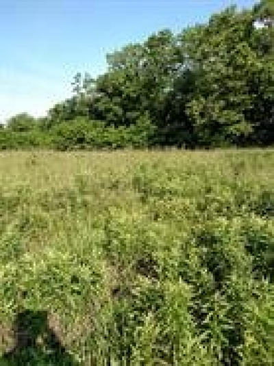 Dry Ridge Residential Lots & Land For Sale: Ashely Drive