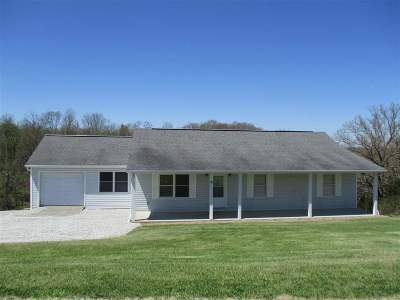 Pendleton County Single Family Home For Sale: 95 Ryan Road