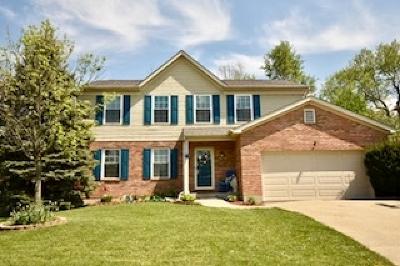 Hebron Single Family Home For Sale: 2569 Bethlehem Lane