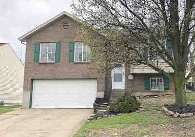 Elsmere Single Family Home For Sale: 445 Ripple Creek Drive