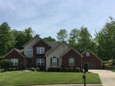Florence Single Family Home For Sale: 9535 Harpers Ferry Drive