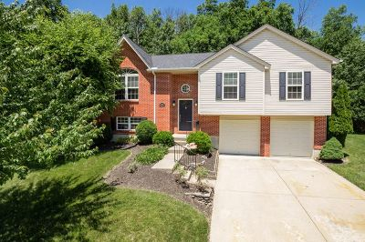 Taylor Mill Single Family Home For Sale: 6191 Grey Oak