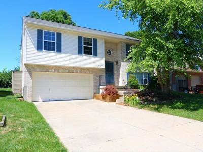 Boone County Single Family Home For Sale: 3745 Sugarberry Drive