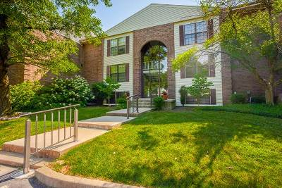 Bellevue Condo/Townhouse New: 624 Truman Lane #203