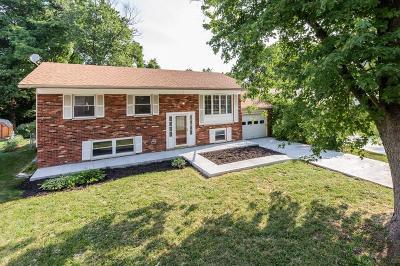 Erlanger Single Family Home For Sale: 3368 Pine Tree Lane