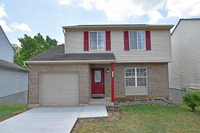 Erlanger Single Family Home New: 3980 Woodchase Drive