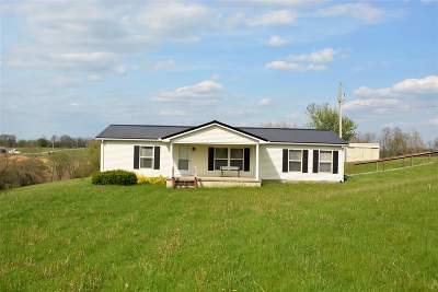 Owen County Single Family Home For Sale: 1530 Old New Liberty Road
