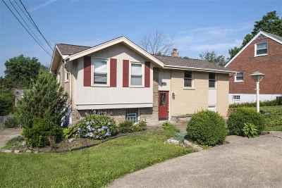 Villa Hills Single Family Home For Sale: 987 Villa Drive