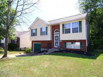 Covington Single Family Home For Sale: 9138 Hawksridge Drive