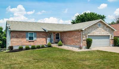 Boone County Single Family Home For Sale: 242 Haley