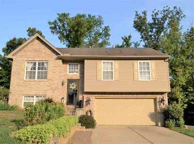 Independence Single Family Home For Sale: 3375 Summitrun Drive