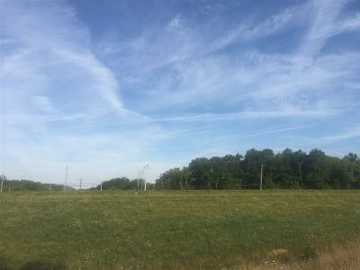 Alexandria Residential Lots & Land For Sale: 11243 Alexandria Pike