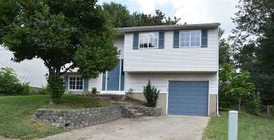 Boone County Single Family Home For Sale: 6571 Louise Court