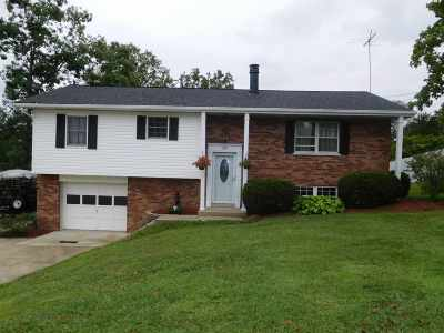 Alexandria Single Family Home For Sale: 957 Hillview Road